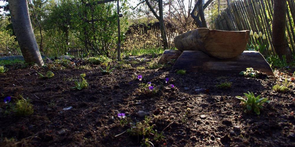 Nyplanterad gobeläng har redan börjat blomstra.