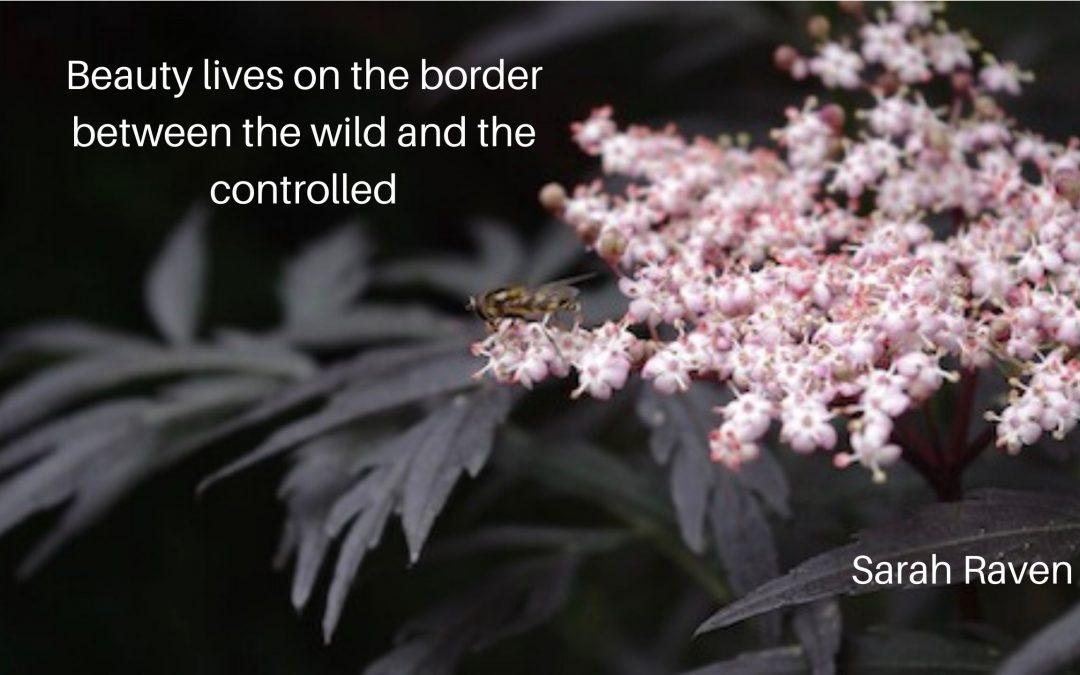 Skönheten och odjuret…