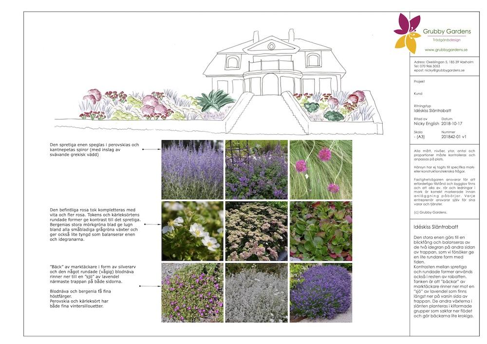 Idéskiss och växtpresentation för en rabattdesign