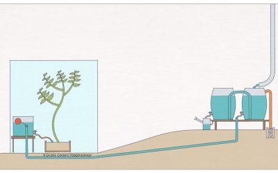 Hur man leder regnvatten in i växthuset – ett exempel