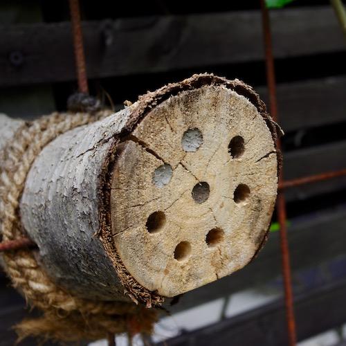 Insektslägenheten med inbyggd tak och 10mm hål