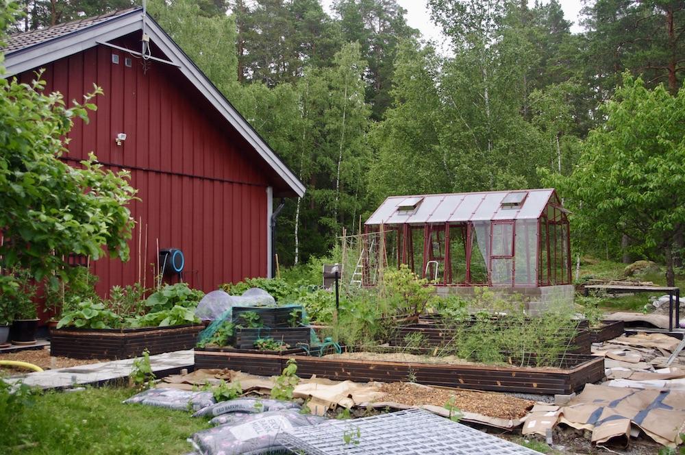 Köksträdgården med vy av växthuset. Det enda som saknas nu är bäddarna runt kanten samt staketet.