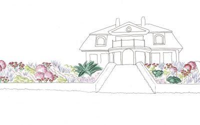 Design för sluttande rabatt i söderläge – Trädgårdsdesign Vaxholm